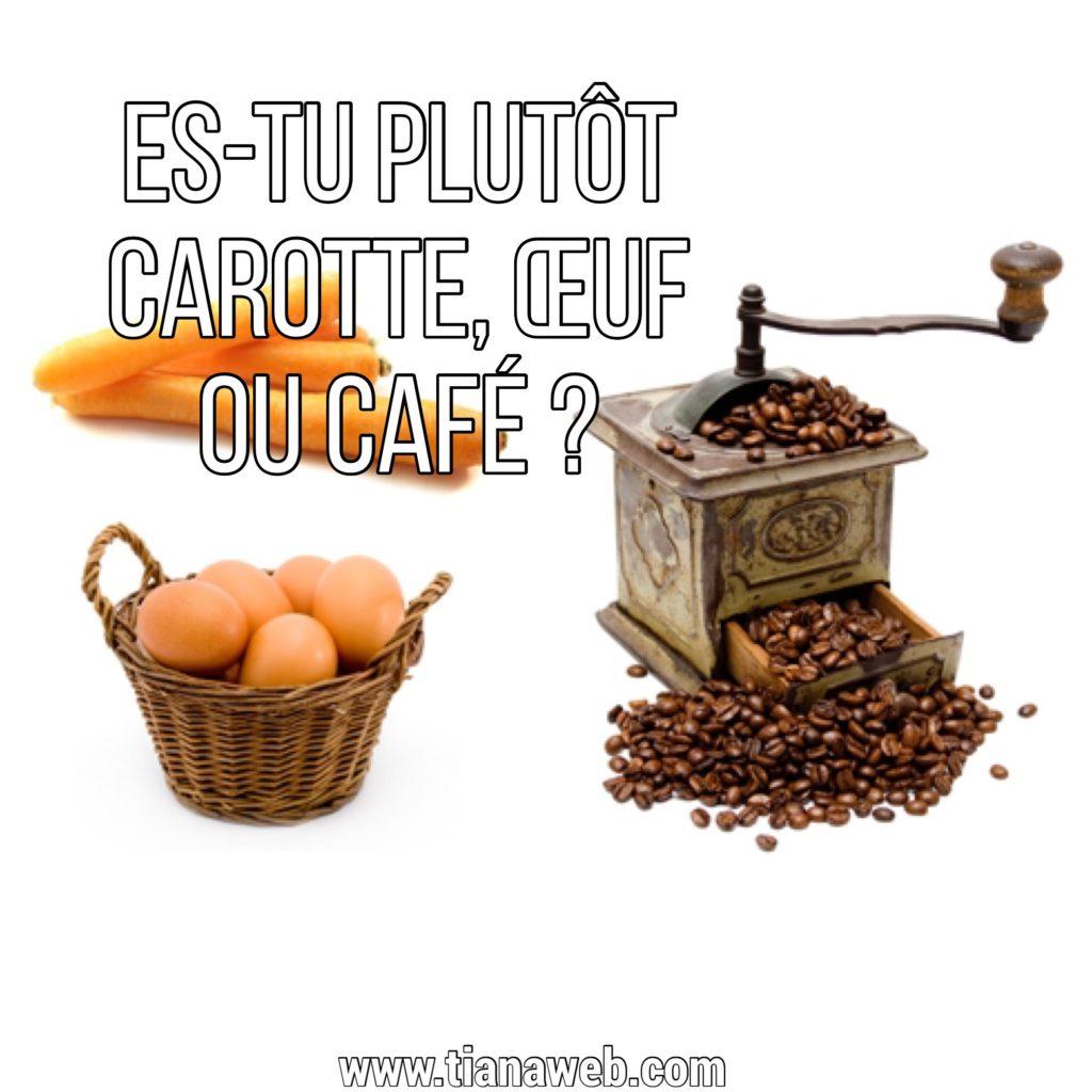 histoire_carotte_oeuf_cafe_tianaweb